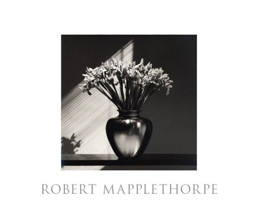 Robert Maplethorpe