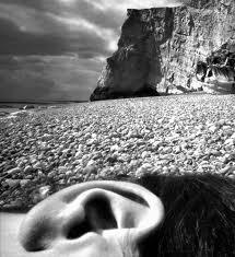 barndt ear